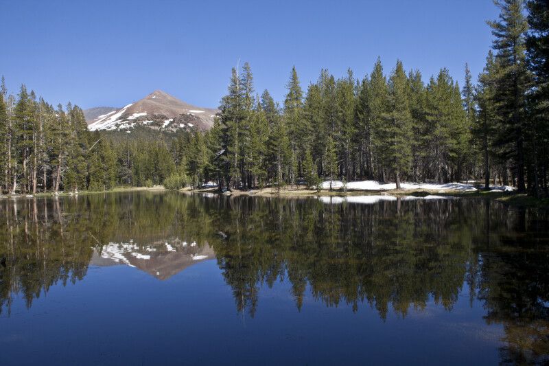 Mount Gibbs Reflected on the Surface of a Lake