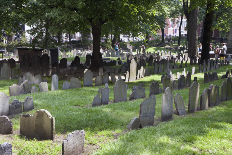 Multiple Rows of Headstones in a Cemetery