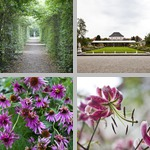Munich Botanical Garden photographs