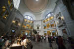 Museum of Natural History Atrium