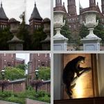 Museums photographs