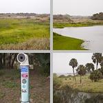 Myakka River State Park photographs