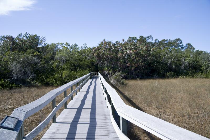 Nine Mile Pond Boardwalk