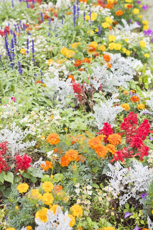 Nymphenburg Flowerbed