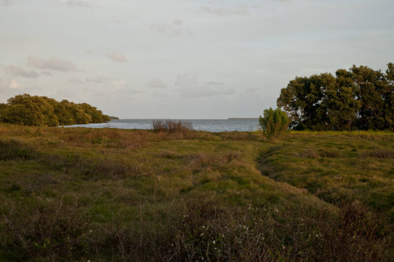 Open Area Leading to Water at the Florida Campgrounds of Everglades National Park