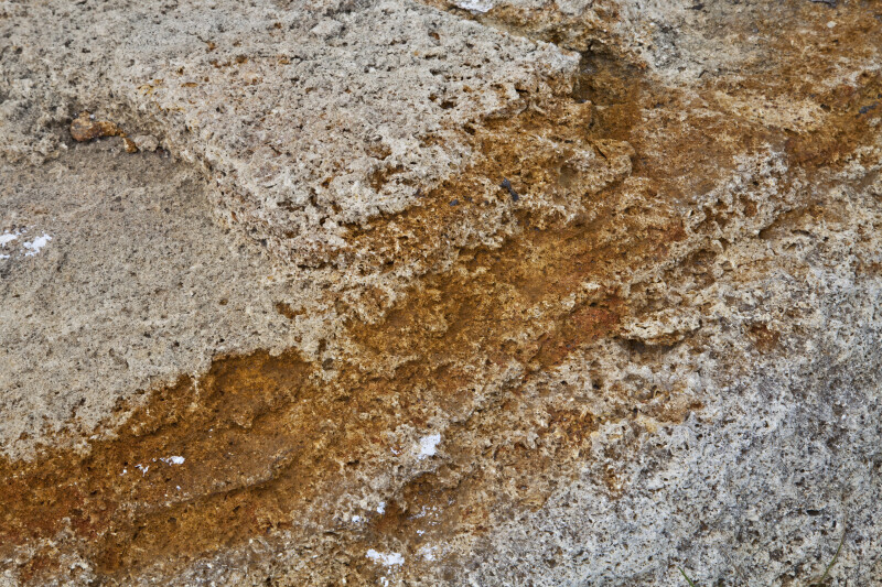 Orange Streak on a Porous Rock