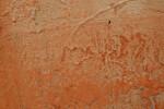 Orange Textured Concrete