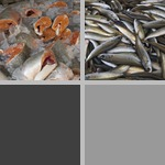 Other Seafood photographs