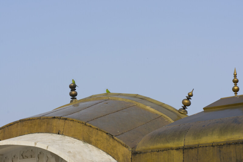 Outer Roof of Shahjahani Mahal