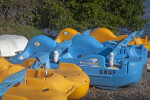 Paddleboats at Biscayne National Park