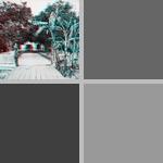 Palatka photographs