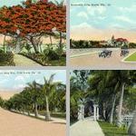 Palm Beach photographs