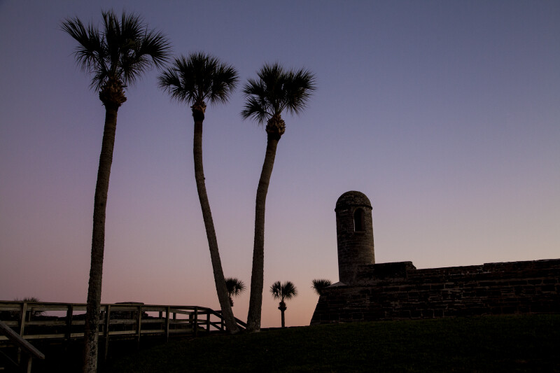 Palm Trees near the Sentry Tower of Castillo de San Marcos