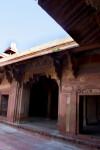 Parrots at Jodha Bai's Palace