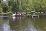 Passengers in a Swan Boat Gliding Across the Lake at the Boston Public Garden
