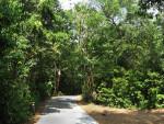 Path at Barnacle