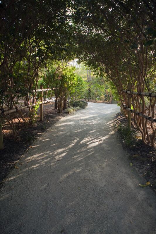 Path at the Morikami