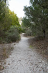 Path of the Shell Mound Trail