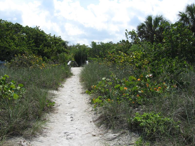 Path to Boardwalk