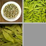 Peas photographs