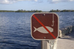 Picture Sign Indicating Not to Fish