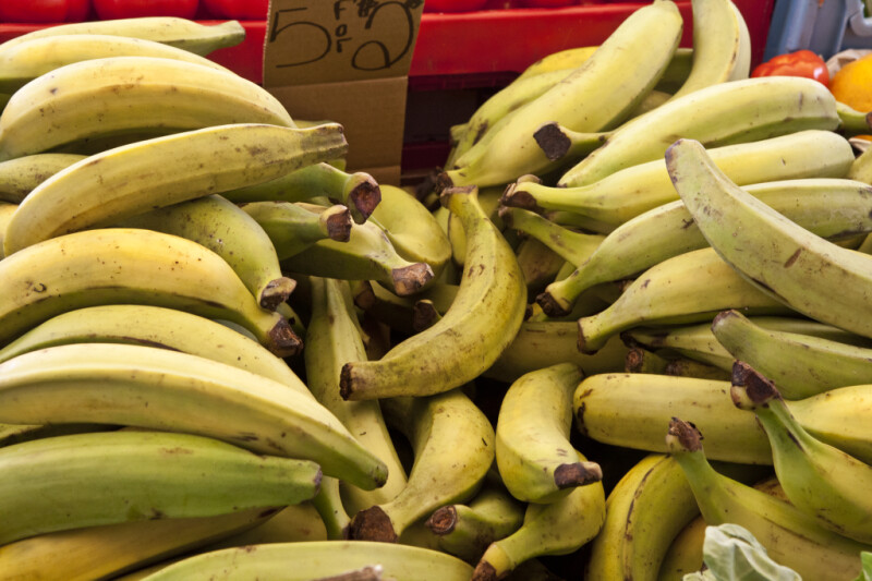 Plantains on Display at Haymarket Square