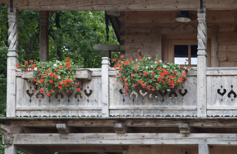 Planters with Flowers
