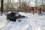 Playground and Whale