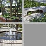 Plaza photographs