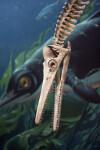 Pliosaur Skull