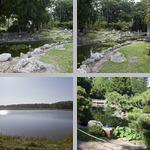Ponds photographs