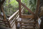 Portion of Skywalk at Myakka River State Park