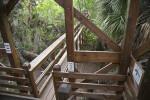 Portion of Skywalk at Myakka River State Park