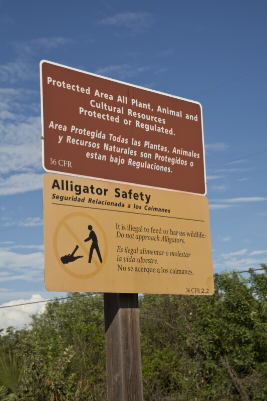 Protected Area and Alligator Safety Signs Attached to Wooden Post
