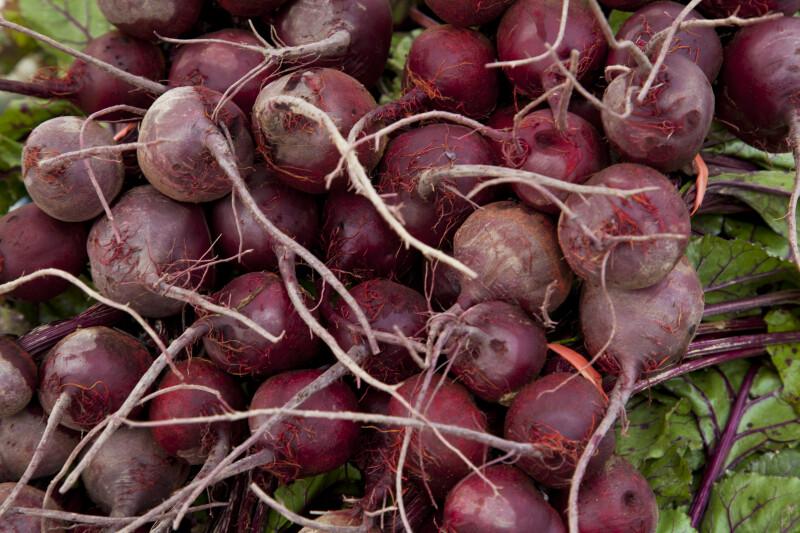 Purple Beets