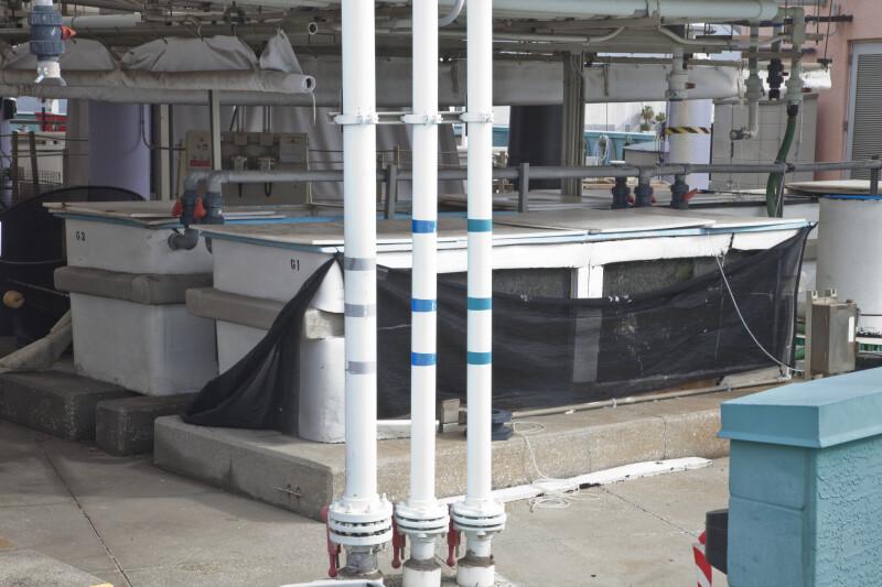 Quarantine Tank at the Florida Aquarium