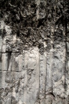 Quarry Wall at Windley Key Fossil Reef Geological State Park