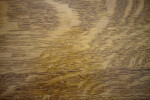 Quarter-Sawn Oak Grain