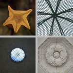 Radial Symmetry photographs