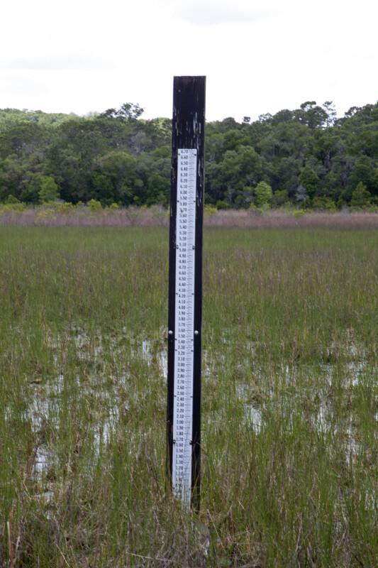 Rainfall Gauge