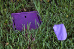 Reclaimed Water Box and Purple Marking Flag
