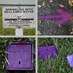 Reclaimed Water photographs