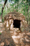 Reconstruction of a Native American Hut