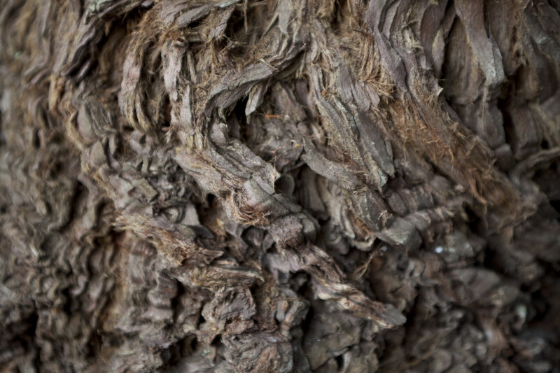 Redwood Knotted Bark