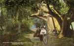 Riding in a Bicycle Chair, on the Jungle Trail
