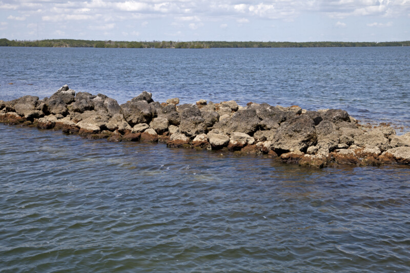 Rock Formation at Biscayne National Park