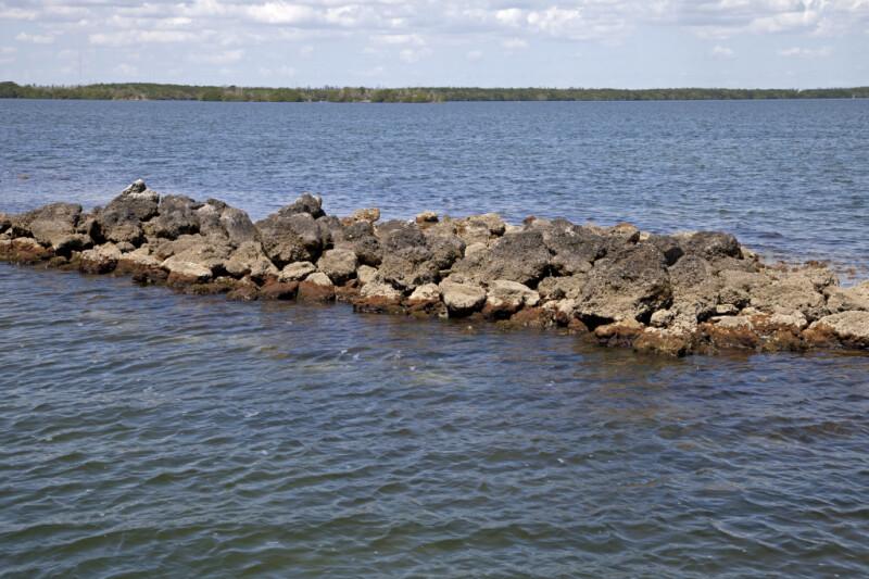 Rock Formation at Biscayne National Park