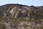 Rocky Outcrop in Desert