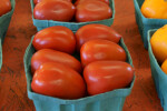 Roma Tomatoes in a Container