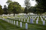 Rows of Headstones